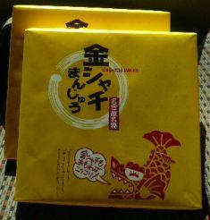 Tokyo_GoldenShachi.JPG